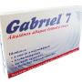 gabriel7