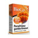 bioco-pecsetviasz-gomba-tabletta-60x