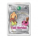 dr-chen-tudo-meridian-62166