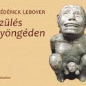 Szules-gyongeden-borito-300x222